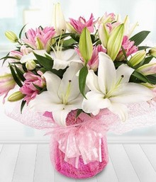 Lovely Lilies*